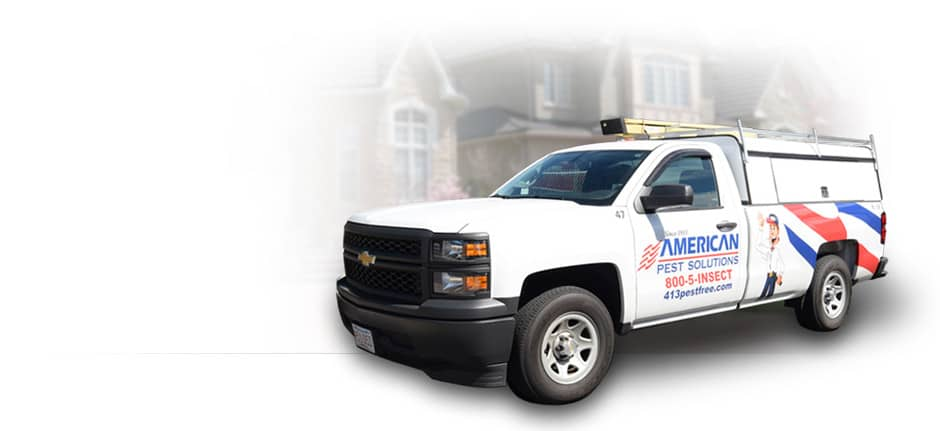 American Pest Solutions Pest Control Truck