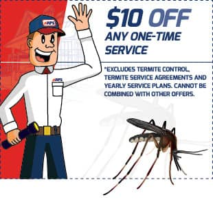save $10 on pest control services